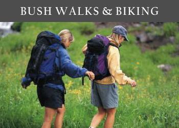 Bush Walks & Mountain Biking