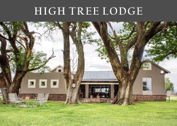 High Tree Lodge