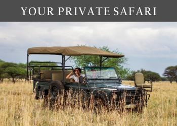 Your Private Safari
